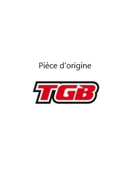 VIS TGB